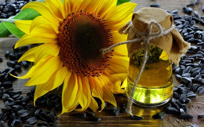 Vegetable_oil _in_cup