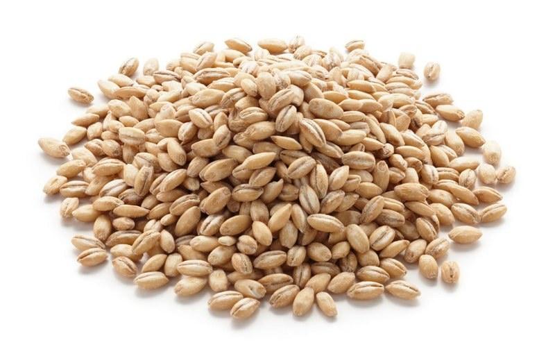 Raw pearled barley