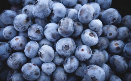 How_much_blueberries_are_in_a_cup