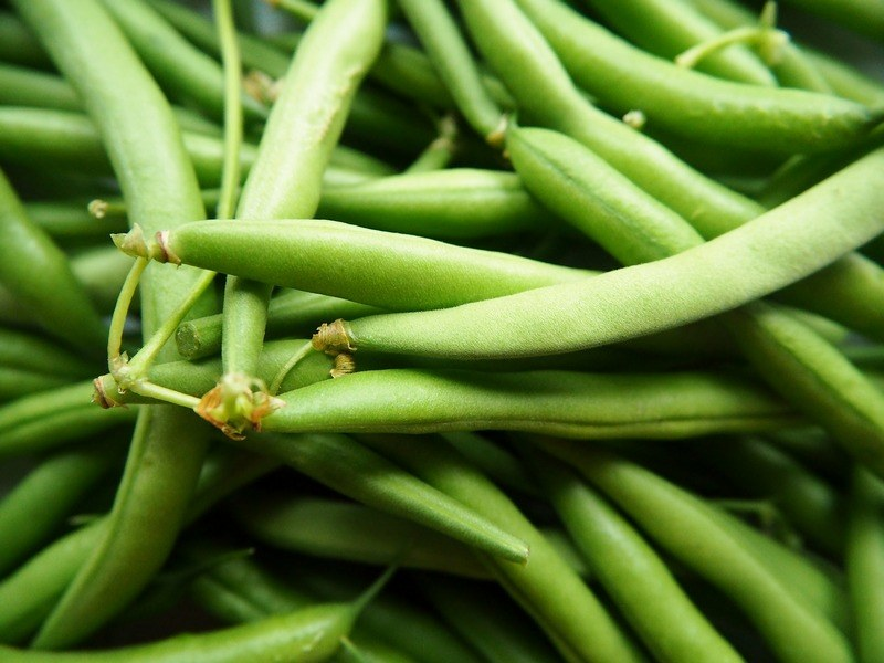 How_to_steam_fresh_green_beans