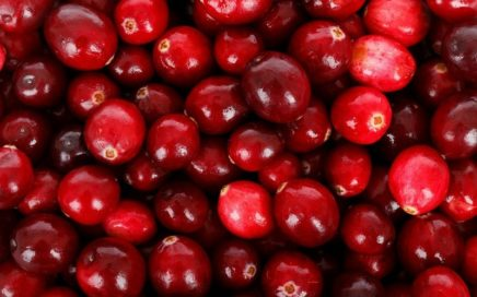 How_much_cranberries_in_a_cup