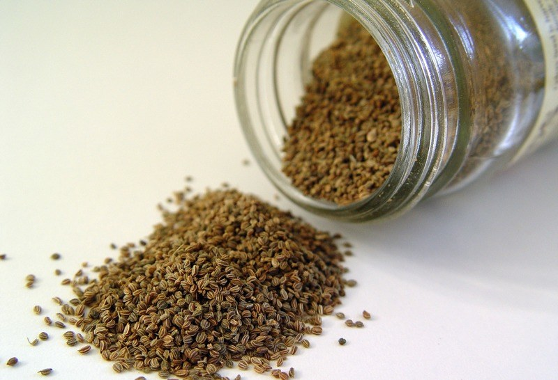 How_you_measure_celery_seed_with_spoons