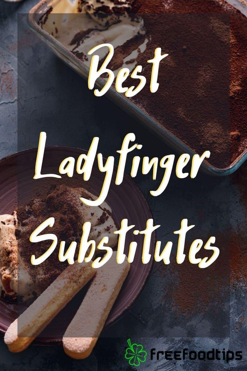 Best Ladyfinger Substitutes